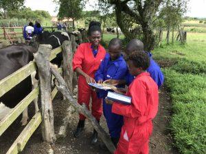 training Uganda