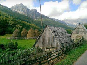 Montenegrin Dairy Farm